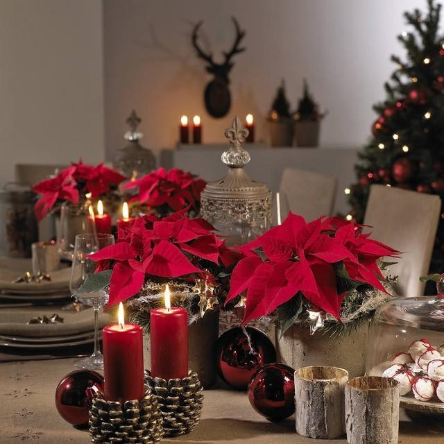 życzenia Bożonarodzeniowe życzenia świąteczne Sms życzenia