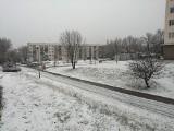 Nagły atak zimy w Zielonej Górze. W ciągu kilkunastu minut ulice i chodniki pokryły się białym puchem. Jak radzą sobie służby porządkowe?