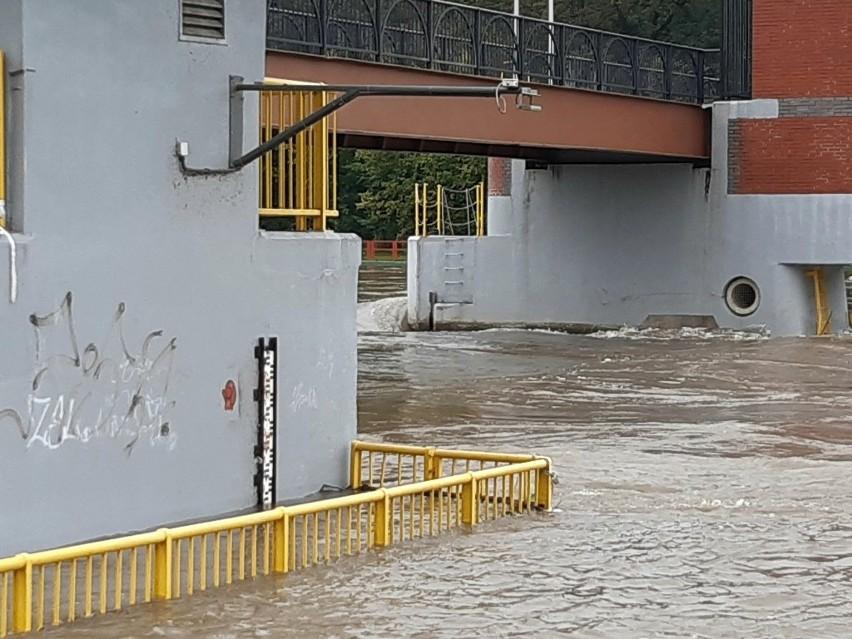 """Wrocław: """"Nie pamiętamy tutaj takiej wody od powodzi tysiąclecia"""". Czy Kozanów jest bezpieczny?"""