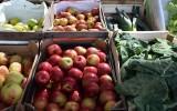 Ile kosztują owoce i warzywa na placu Balcerowicza w Rzeszowie? Sprawdź ceny [Poniedziałek, 7 września]