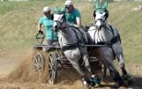 Woźnice i konie na starcie. Widowisko w Świeciu n. Osą [zdjęcia]