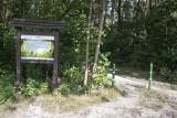 Blisko rok temu miasto kupiło las Borkowski. Jak prezentuje się to jedno z najdzikszych miejsc Krakowa?