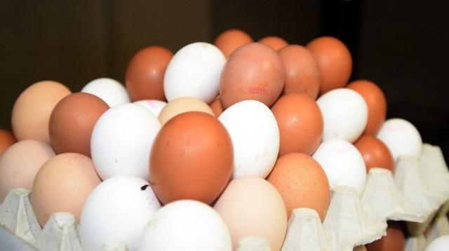 GIS ostrzega: Salmonella w Biedronce. Groźna bakteria znaleziona na skorupkach jajek.