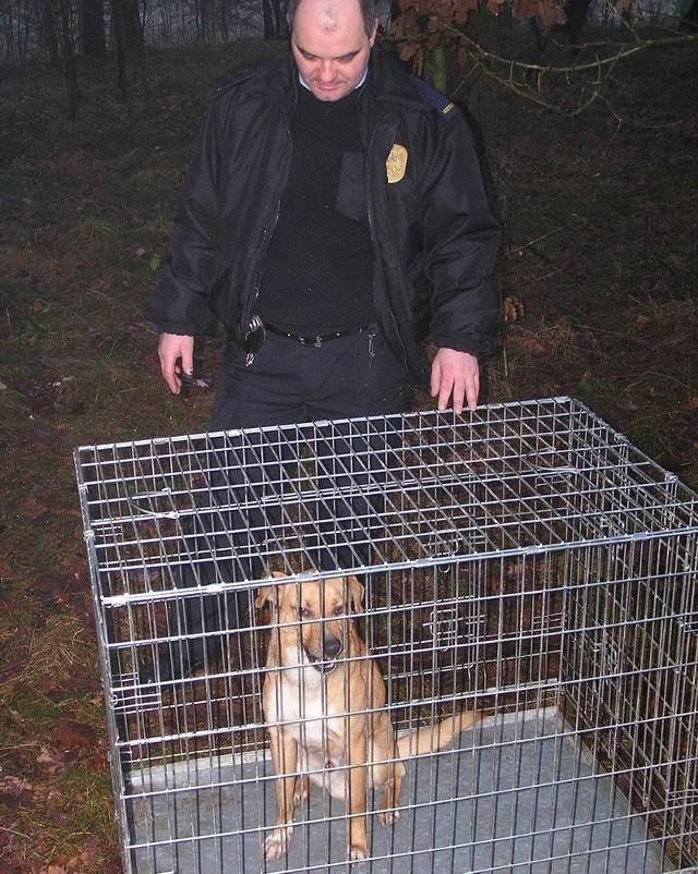 Strażnik Krzysztof Maciejewski z porzuconym psem.