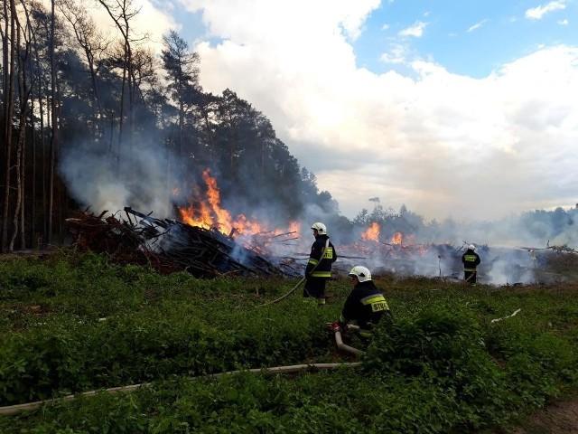 Leśniczy w pożarze dopatrują się udziału osób trzecich, dlatego też wyznaczyli nagrodę dla osób, które pomogą w ujęciu sprawcy.