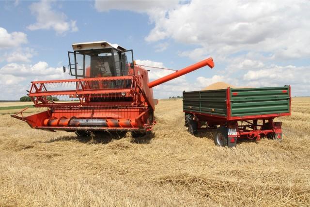 Najwięcej wypadków w rolnictwie ma miejsce podczas żniw.