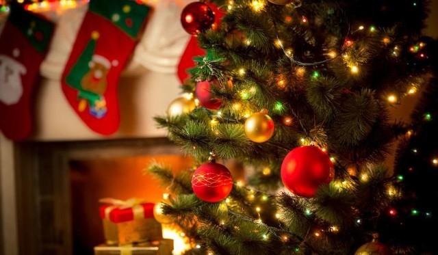 życzenia świąteczne życzenia Na Boże Narodzenie I śmieszne