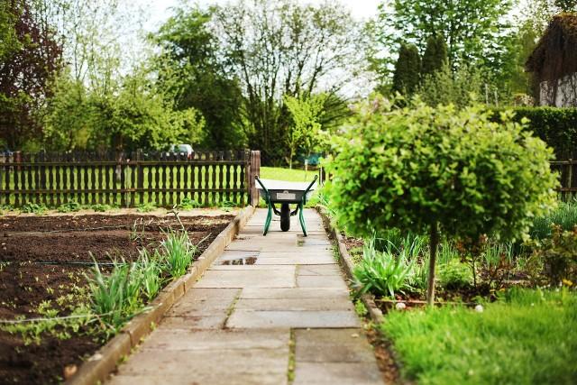 Wraz z początkiem wiosny wzrasta zainteresowanie ogródkami działkowymi. Sprawdź, gdzie można kupić ogródek działkowy we Wrocławiu. Kliknij pierwsze zdjęcie i kieruj się strzałkami, by przeglądać dalej.