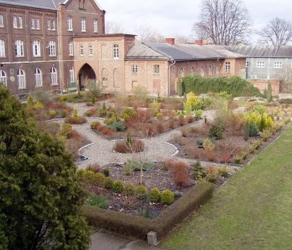 Rośliny w tym ogrodzie posadzili uczniowie. Oni również je pielęgnują.