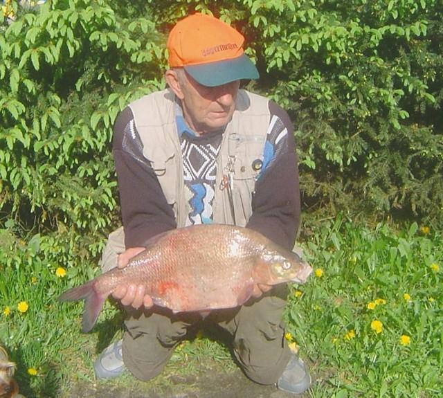 Tego pieknego leszcza złowił Jan Szkop z koła PZW nr 1 w Czerwieńsku. Ryba miała 3,1 kg i mierzyła 62 cm.