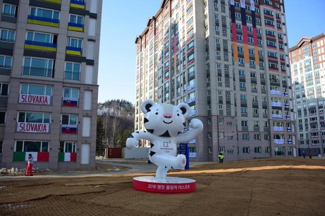 Tygrys Soohorang to maskotka igrzysk olimpijskich w Pjongczangu.