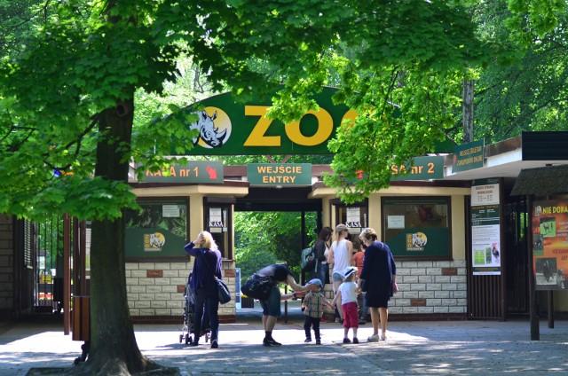 Nowe Zoo cieszy się popularnością w długi weekend
