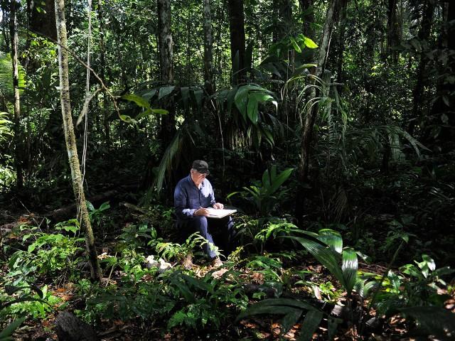 """Film dokumentalny reżysera oscarowego """"Marszu pingwinów"""" przedstawia magiczne lasy deszczowe w Peru i Gabonie, powszechnie uznawane za """"zielone płuca"""" naszej planety. Warto podkreślić, że """"Był sobie las"""" został zrealizowany w nowoczesnej technice 4K i bazuje na koncepcji francuskiego przyrodnika i pioniera botaniki, Francisa Hallé."""