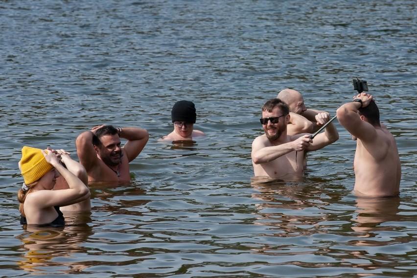 Mimo wiosennej aury morsy z Bydgoszczy znowu kąpali się w...