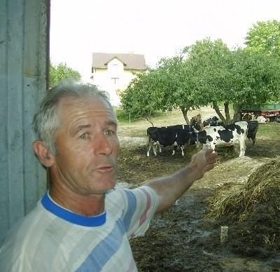 - 14 dojnych krów daje ponad 100 l. mleka - objaśnia Bogdan Malinowski. - Kosztuje to ponad 150 zł. Trzy udoje to 500 zł. strat.