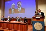 """Nagroda Nobla z medycyny 2021. David Julius i Ardem Patapoution wyróżnieni za """"odkrycie receptorów temperatury i dotyku"""""""