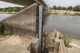 Poznań: Niski poziom wody w Warcie. Cierpią ryby, a właściciele łodzi i kajakarze załamują ręce [ZDJĘCIA, WIDEO]