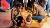 Bydgoski Zygzak dla dzieci w sportowej odsłonie [zdjęcia, wideo]