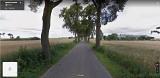 Coraz bliżej przebudowy drogi Wielki Głęboczek-Brzozie w powiecie brodnickim. Wstępnie wycięte będę wszystkie drzewa z jednej strony drogi