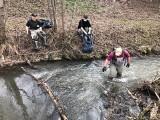 Wielkie Sprzątanie Rudawy i zarybianie rzeki. Indywidualne spacery z workami na śmieci [ZDJĘCIA]