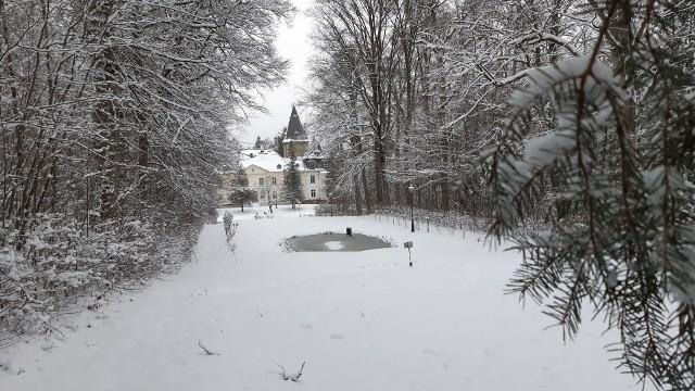 Warcino w zimowej odsłonie prezentuje się bajecznie. I okazuje się, że słynie nie tylko z pałacu Otto von Bismarcka, w którym mieści się obecnie Technikum Leśne. Kryje wiele innych tajemnic i niezwykłych historii, które próbowaliśmy spod śniegu odkopać.  Kto dziś pamięta, że na Czarciej Górze palono czarownice? Dlaczego Sybilla popełnił samobójstwo? A kto był na cmentarzu ukochanych psów cesarza? Zapraszamy na spacer po zimowym Warcinie.