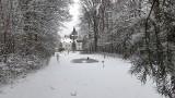 Czarcia Góra, cmentarz psów i samobójstwo Sybilli. Warcino nieznane pod śnieżną pierzyną [ZDJĘCIA]