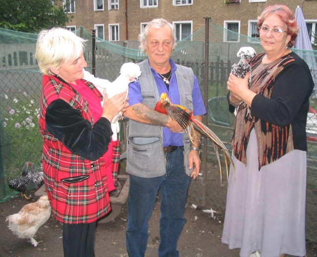 To właśnie są, według stargardzkich prawników, zwierzęta gospodarcze! - mówią Ewa i Roman Polaszowie (na zdjęciu z lewej) i ich sąsiadka, Maurycja Patyk. Panie trzymają kury holenderki, pan Roman - bażanta złotego.