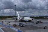 Ogromny samolot wylądował na poznańskiej Ławicy. To Antonow An-124. Zobacz, jak wygląda