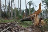 Silny wiatr w Bielsku Białej i okolicy. 1700 odbiorców bez prądu przez Halny.
