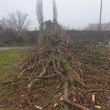 Na przeciwko Manufaktury wycinają drzewa pod stację podziemnej kolei. Nie będzie parku lecz stacja