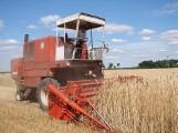 Szczęśliwy jak rolnik? Komu praca daje najwięcej zadowolenia - sprawdź