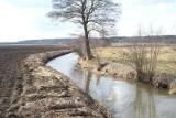 Pomoc dla rolników na nawadnianie. Na walce z suszą skorzystają też spółki wodne
