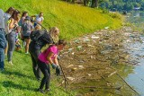 Jezioro Rożnowskie jak wysypisko śmieci. Wolontariusze Fundacji Nowe Kierunki posprzątali brzegi, ale to kropla w morzu. Kto się tym zajmie?