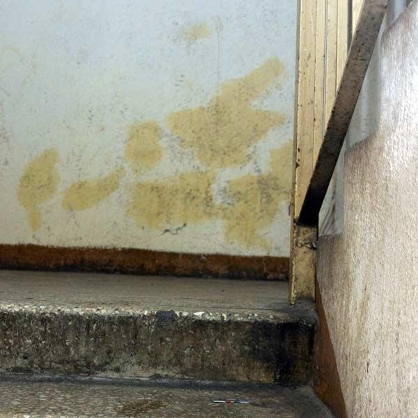 Zaśmiecona i brudna klatka schodowa to codzienność w wieżowcu przy Mikołajczyka w Rzeszowie.
