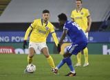 Brighton & Hove Albion ukarało kibica zakazem stadionowym za obraźliwy wpis na Twitterze