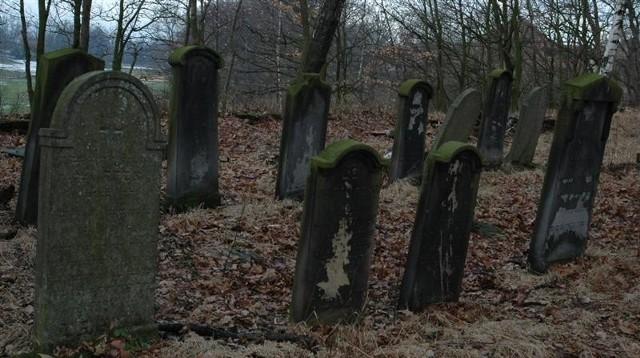 Kirkut w Oleśnie. Cmentarz zydowski.