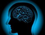 Lek, który odmładza mózg i przywraca pamięć? Nowe odkrycie