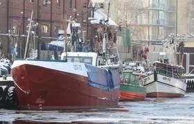 Rybacy stoją w porcie i każdego dnia traca kilka tysięcy złotych.