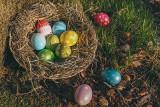 10 sposobów jak nie przytyć w Wielkanoc POTRAWY WIELKANOCNE nie tuczą? Oto porady psychodietetyka: jak odmówić dokładki, co i ile jeść i pić