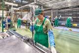 Pilkngton: Coraz więcej kobiet interesuje się podjęciem pracy na stanowiskach do tej pory uznawanych za typowo męskie