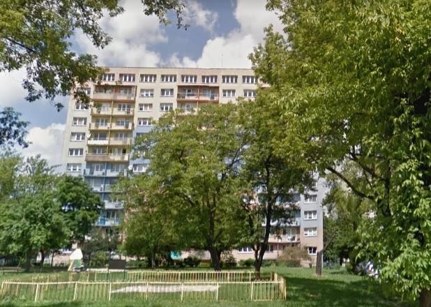 Z bloku przy ul. Malczewskiego wypadł pies. To nieszczęśliwy wypadek