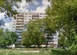 Pies spadł z balkonu wieżowca w Łodzi na Górnej. Zwierzę nie przeżyło upadku. Zdaniem policji doszło do wypadku