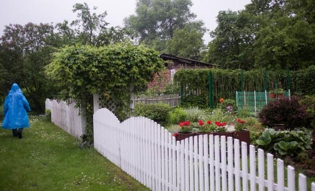 W Polsce funkcjonuje ponad 4600 rodzinnych ogrodów działkowych, w których jest łącznie ponad 900 tysięcy działek. Okręg Poznański Polskiego Związku Działkowców skupia 291 ogrodów i ponad 52 tys. działek. Rekreacja na działkach stała się atrakcyjna w czasie pandemii COVID-19. Rośnie zainteresowanie kupnem własnego ogródka. I coraz wyższe są ich ceny.Zobacz, ile kosztują ogródki działkowe w Poznaniu i okolicy ---->