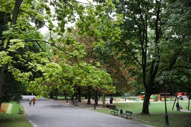 Plan remontu parku Bednarskiego wzbudza kontrowersje