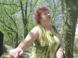 W Żarach wysychają przedwojenne drzewa