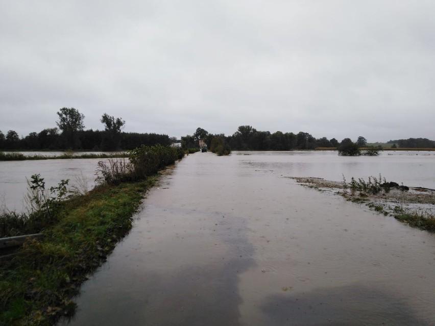 Wezbrana rzeka Prudnik w Skrzypcu