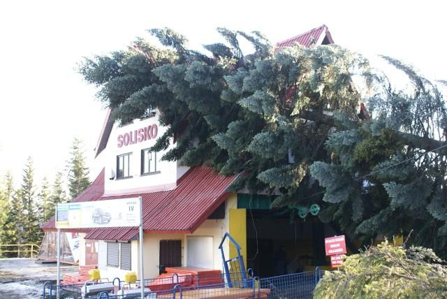 Niszczycielska siła huraganowych wiatrów w Beskidach pod Pilskiem