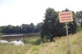 Kiedyś nad jeziorem w Mroczy był pomost i kajaki. Teraz są chaszcze!