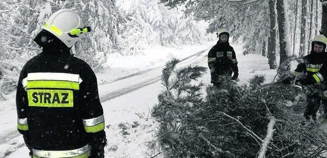 Niegowa, powiat myszkowski. Strażacy usuwają powalone drzewa