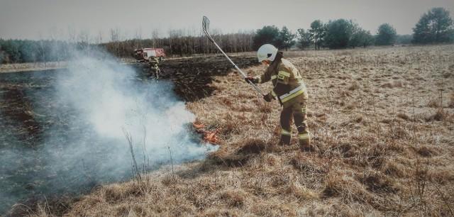 W niedzielę strażacy z Orońska gasili pożar nieużytków między Wałsnowem a Dobrutem.